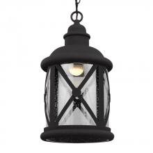 Sea Gull 6221492S-12 - LED Outdoor Pendant
